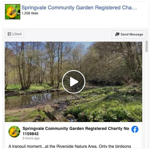 Springvale community garden facebook page