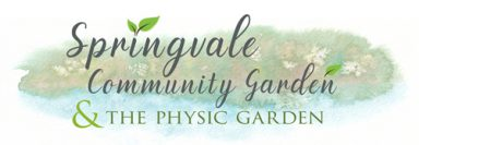 Welcome to Springvale Community Garden